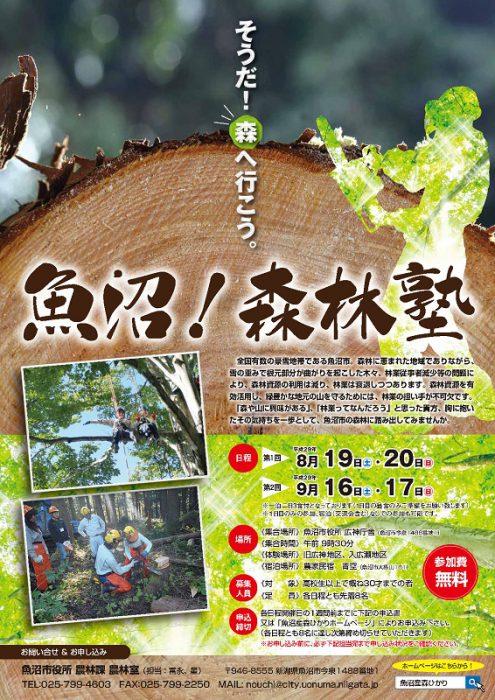 森林塾チラシ(表)